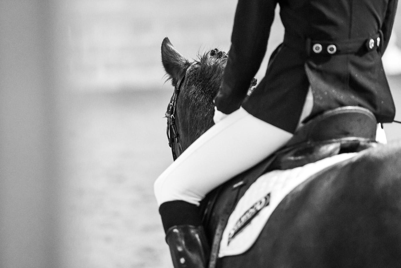 Sunday 13th August 2017 - White Horse Farm Equestrian Centre